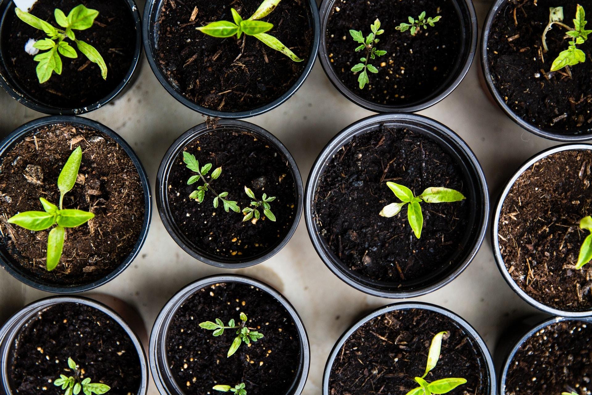 Duurzaamheid leeft meer dan ooit, ook in beleggen